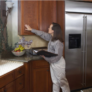 Furniture Medic of the Greater Toronto Area Kitchen Cabinet Refacing